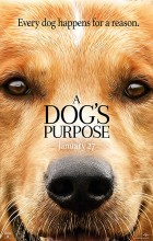 A Dogs Purpose (2017 - Christian)