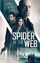 Spider in the Web (2019 - English)